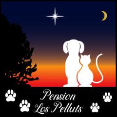 www.lospelluts.fr